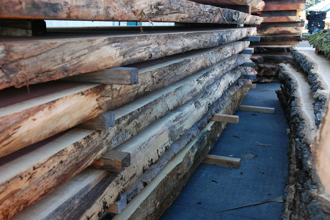 Live Edge Slabs at The Hardwood Centre in Corvallis and Albany, Oregon